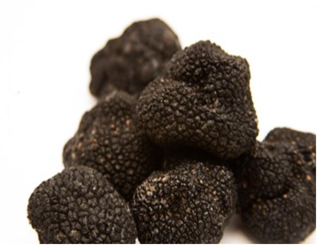 black-truffle-brumale